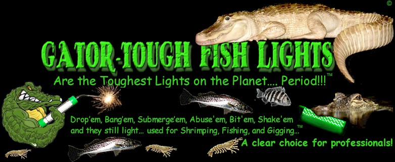Fishing lights and fishing information for How much is a saltwater fishing license in florida