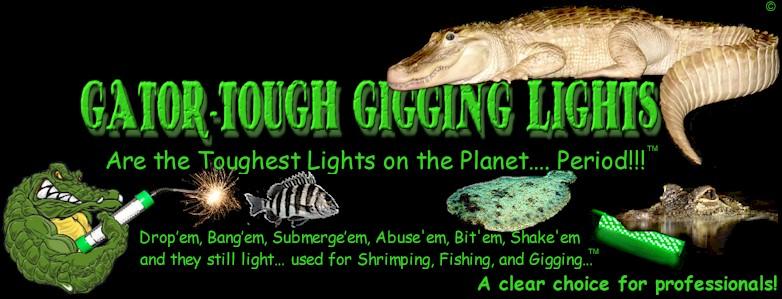 flounder gigging pro lights, Reel Combo