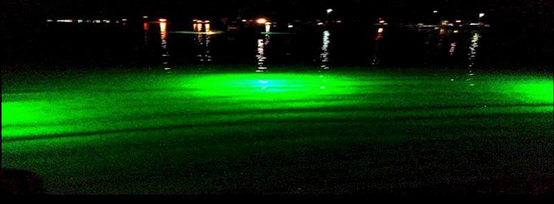 gator-tough™ led underwater shrimping, fishing & gigging lights, Reel Combo